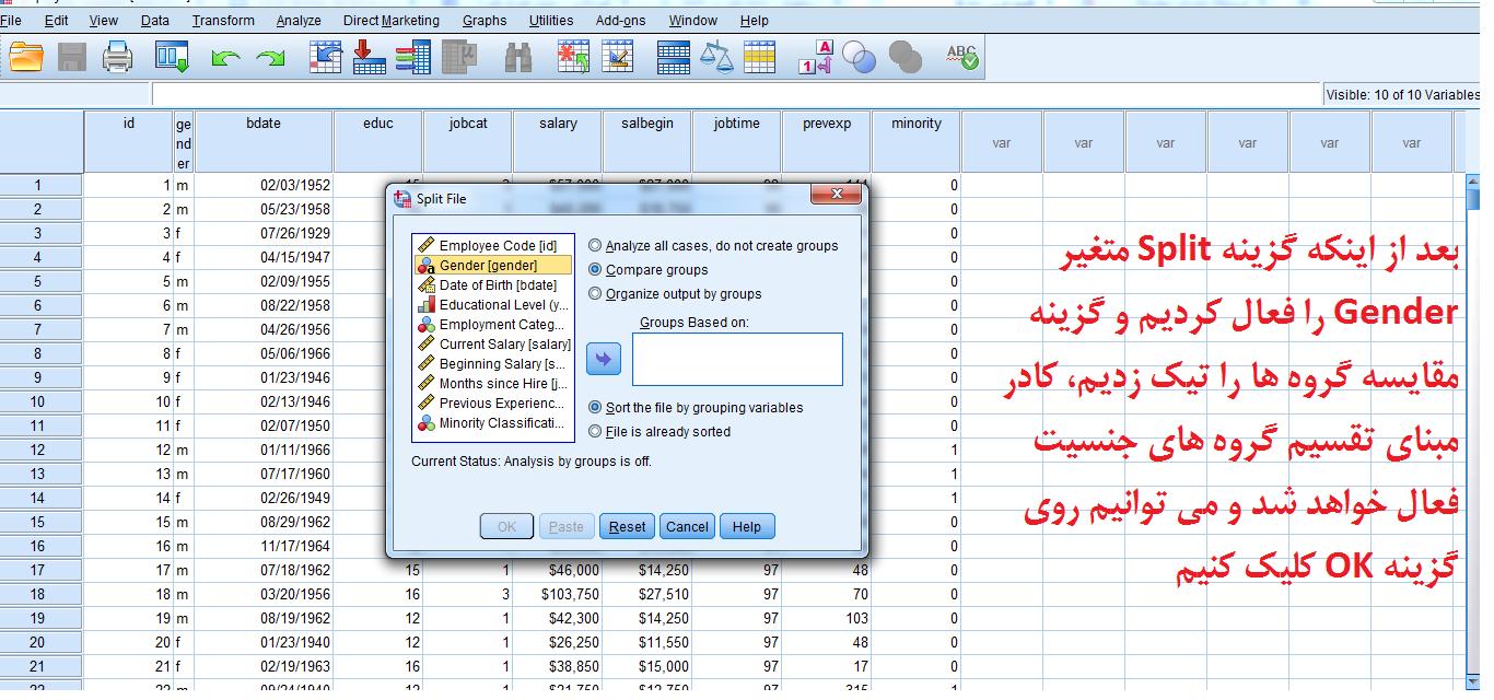 تفکیک یا دونیم کردن یک فایل(Split File) در SPSS
